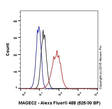 Flow Cytometry - Anti-MAGEC2 antibody [EPR19064] - BSA and Azide free (ab223794)