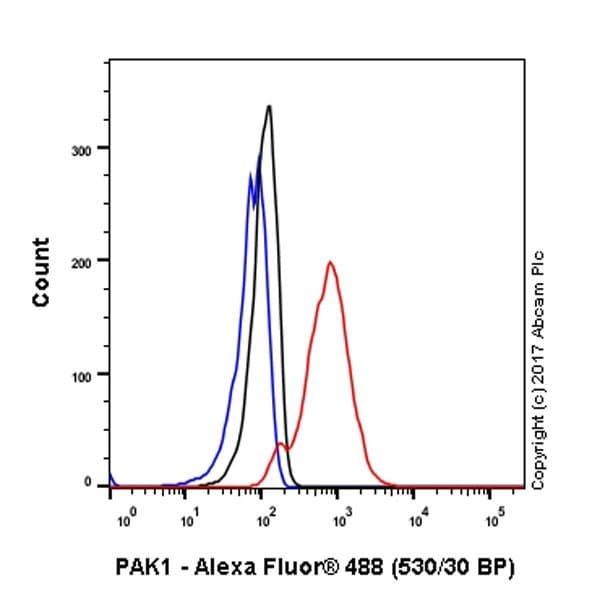 Flow Cytometry - Anti-PAK1 antibody [EPR20048] (ab223849)