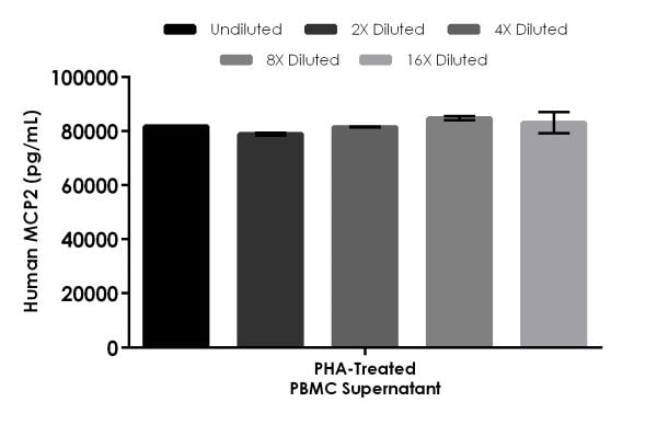 Interpolated concentrations of native MCP2 in Human 1.5%-PHA-treated and untreated PBMC (2 days) supernatants.
