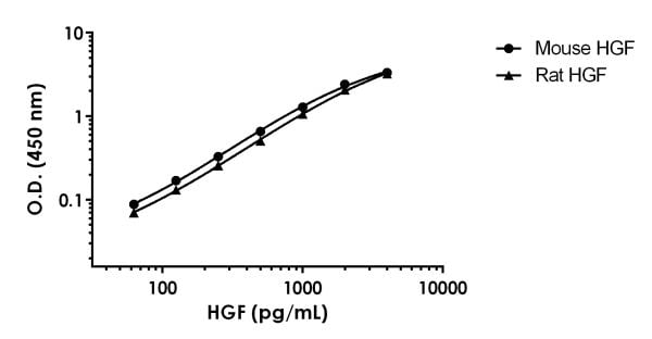 Recombinant rat and mouse HGF standard curves