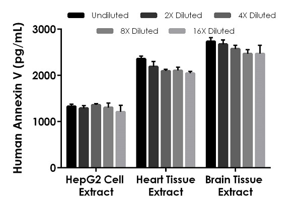 Interpolated concentrations of native Annexin V in human HepG2 cell extract.