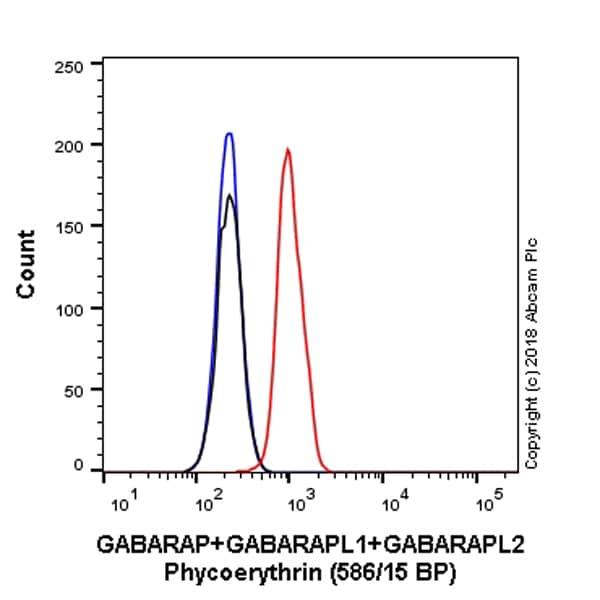 Flow Cytometry - PE Anti-GABARAP+GABARAPL1+GABARAPL2 antibody [EPR4805] (ab223948)