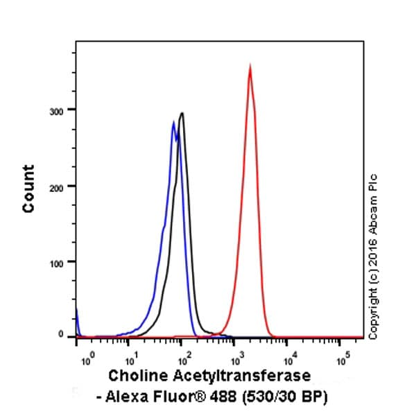 Flow Cytometry - Anti-Choline Acetyltransferase antibody [EPR13024(B)] - BSA and Azide free (ab224267)