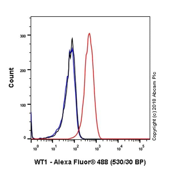 Flow Cytometry - Anti-Wilms Tumor Protein antibody [SP320] - N-terminal (ab224801)