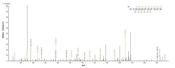 Mass Spectrometry - Recombinant Helicobacter pylori CagA protein (Tagged) (ab224836)