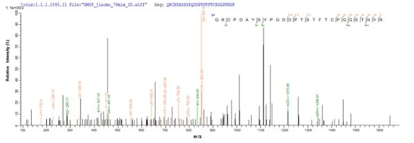 Mass Spectrometry - Recombinant Tobacco Osmotin protein (His tag) (ab224842)