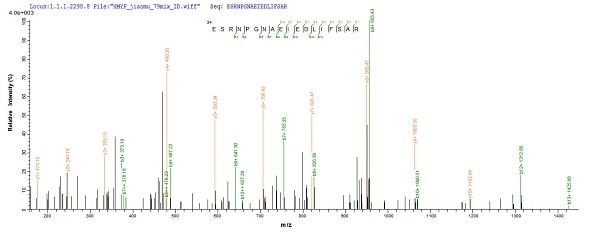 Mass Spectrometry - Recombinant Influenza A Influenza A Virus Nucleoprotein (His tag) (ab224859)