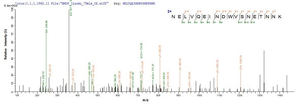 Mass Spectrometry - Recombinant Putative Serine Protease Inhibitor protein (Tagged) (ab224865)