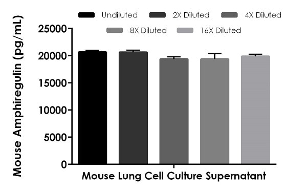 Interpolated concentrations of native Amphiregulin in Mouse lung cell culture supernatant samples.