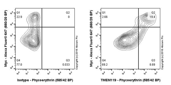 Flow Cytometry - PE Anti-TMEM119 antibody [106-6] (ab225496)