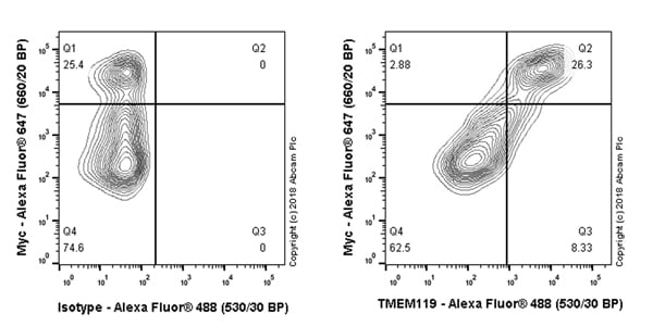 Flow Cytometry - Anti-TMEM119 antibody [106-6] (Alexa Fluor® 488) (ab225497)