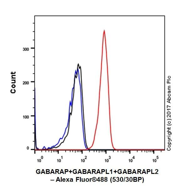 Flow Cytometry - Anti-GABARAP+GABARAPL1+GABARAPL2 antibody [EPR4805] - BSA and Azide free (ab225535)