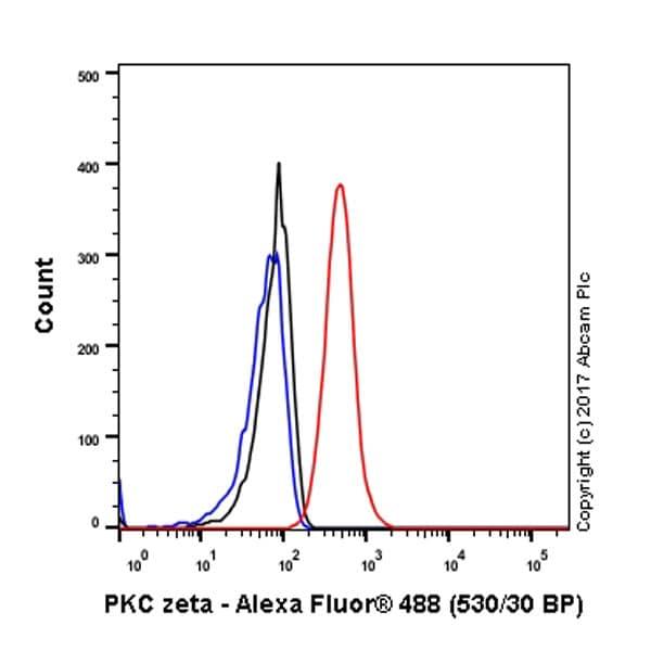 Flow Cytometry - Anti-PKC zeta antibody [EP1490(2)] - BSA and Azide free (ab225554)
