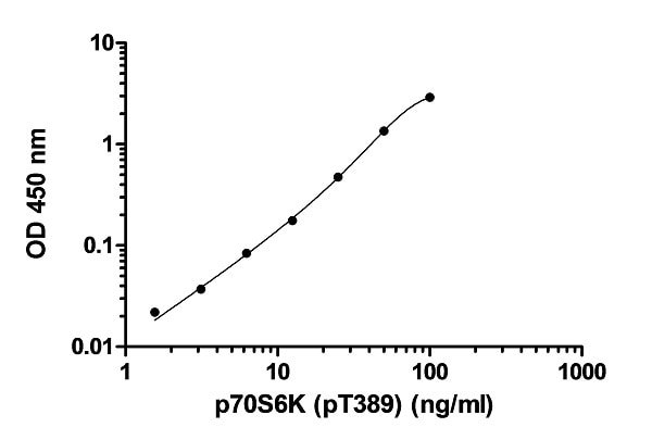 Example of p70S6K (pT389) recombinant protein standard curve