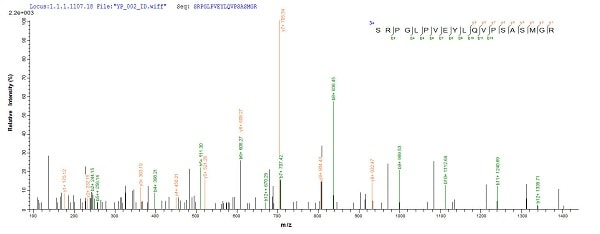 Mass Spectrometry - Recombinant Mycobacterium tuberculosis Mycobacterium tuberculosis Ag85 protein (His tag) (ab225596)
