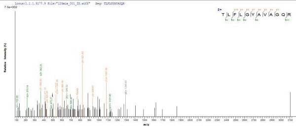 Mass Spectrometry - Recombinant Salmonella heidelberg D-serine dehydratase (dsdA) protein (His tag) (ab225614)