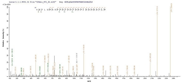 Mass Spectrometry - Recombinant Human HLA B protein (His tag) (ab225646)