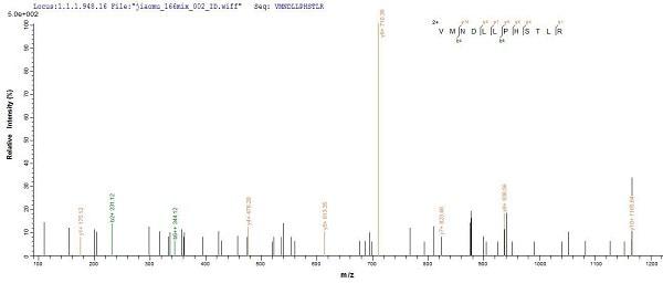 Mass Spectrometry - Recombinant Woodchuck Interferon gamma protein (His tag) (ab225661)