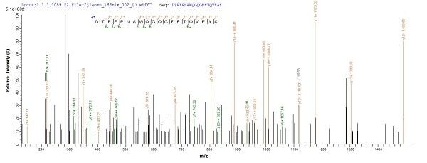 Mass Spectrometry - Recombinant Mouse AE binding protein 1 (His tag) (ab225975)