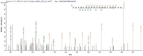 Mass Spectrometry - Recombinant Gingipain R1 protein (His tag) (ab225982)