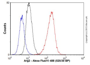 Flow Cytometry - Anti-Arg2 antibody [EPR9473] - BSA and Azide free (ab225989)