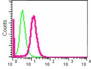 Flow Cytometry - Anti-BIN1 antibody [EPR13463-25] - BSA and Azide free (ab226006)