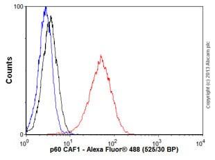 Flow Cytometry - Anti-p60 CAF1/MPP7 antibody [EPR6105] - BSA and Azide free (ab226065)