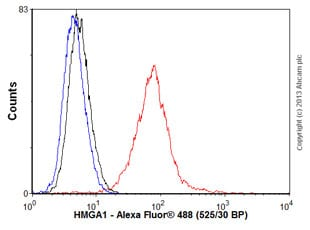 Flow Cytometry - Anti-HMGA1 antibody [EPR7839] - BSA and Azide free (ab226112)