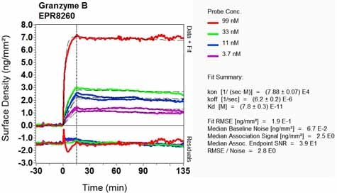 OI-RD Scanning - Anti-Granzyme B antibody [EPR8260] - BSA and Azide free (ab226162)