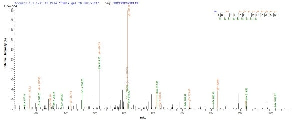 Mass Spectrometry - Recombinant Human WDR77 protein (Tagged) (ab226226)