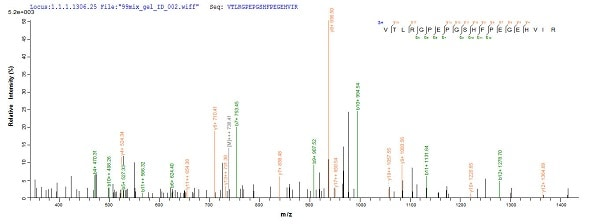 Mass Spectrometry - Recombinant Mouse SRPX2 protein (Tagged) (ab226228)