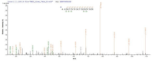 Mass Spectrometry - Recombinant Human SDHA protein (Tagged) (ab226268)