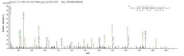 Mass Spectrometry - Recombinant Staphylococcus aureus CHIPS protein (His tag) (ab226270)