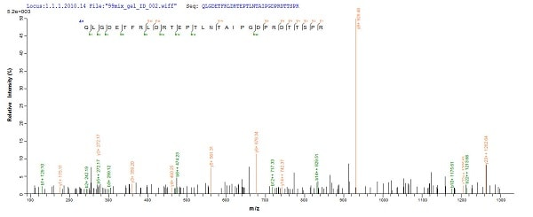 Mass Spectrometry - Recombinant <em>E. coli </em> Beta-lactamase CTX-M-1 protein (His tag) (ab226272)