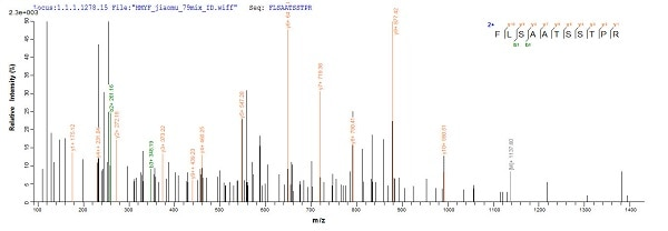 Mass Spectrometry - Recombinant Mycobacterium tuberculosis MPT64 protein (His tag) (ab226277)
