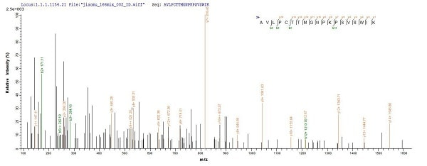 Mass Spectrometry - Recombinant Mouse MUSK protein (Tagged) (ab226426)