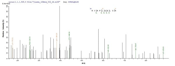 Mass Spectrometry - Recombinant Human SOCS1 protein (His tag) (ab226430)