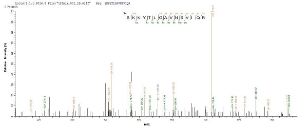 Mass Spectrometry - Recombinant <em>E. coli </em> metC protein (His tag) (ab226431)