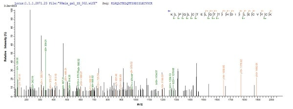 Mass Spectrometry - Recombinant HPV16 E6 protein (His tag) (ab226447)