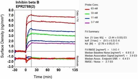 Other - Anti-Inhibin beta B antibody [EPR2788(2)] - BSA and Azide free (ab226845)