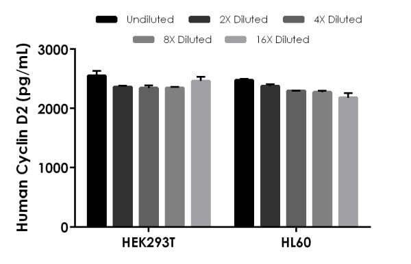 Interpolated concentrations of native Cyclin D2 in Human HEK-293T and HL-60 cell extract samples