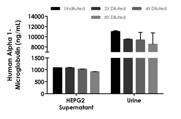Interpolated concentrations of native Alpha 1-Microglobulin in Human cell culture supernatant and urine samples