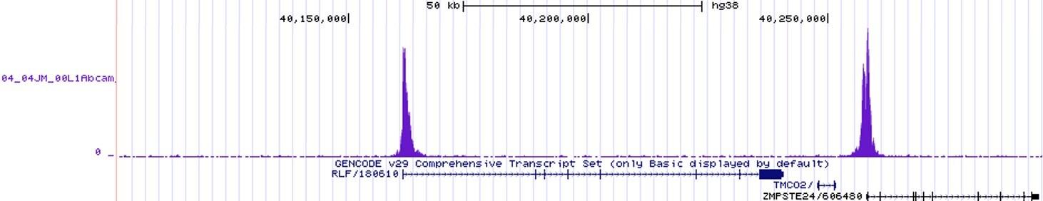 CHIPseq - Anti-Histone H3 (tri methyl K4) antibody [EPR20551-225] - BSA and Azide free (ab227060)