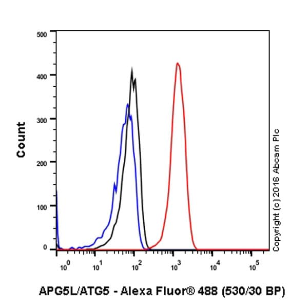 Flow Cytometry - Anti-APG5L/ATG5 antibody [EPR4797] - BSA and Azide free (ab227084)