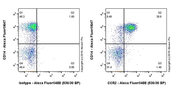 Flow Cytometry - Anti-CCR2 antibody [EPR22191] (ab227236)