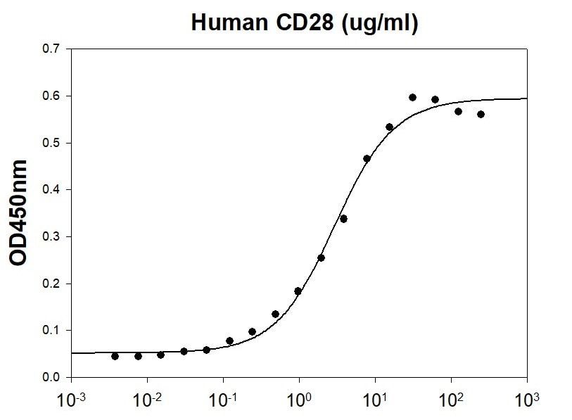 Biological activity - Recombinant Human CD80 protein (His tag) (ab227403)