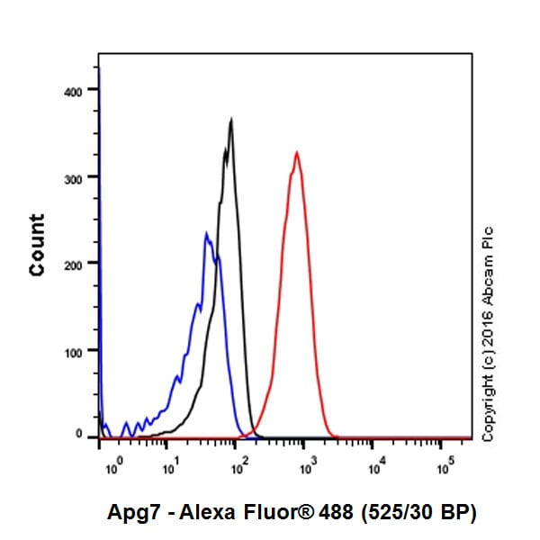Flow Cytometry - Anti-ATG7 antibody [EP1759Y] - BSA and Azide free (ab227564)
