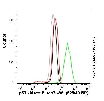 Flow Cytometry - Anti-p53 antibody [SP161] (ab227655)