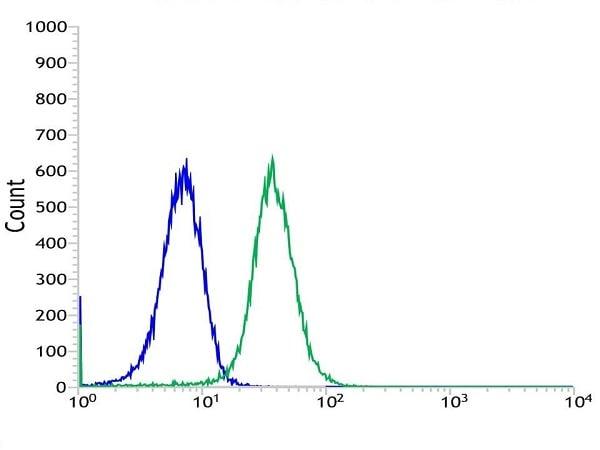 Flow Cytometry - Anti-CD13 antibody [SP187] (ab227663)