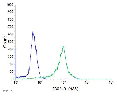 Flow Cytometry - Anti-TMEM173 antibody [SP338] (ab227704)